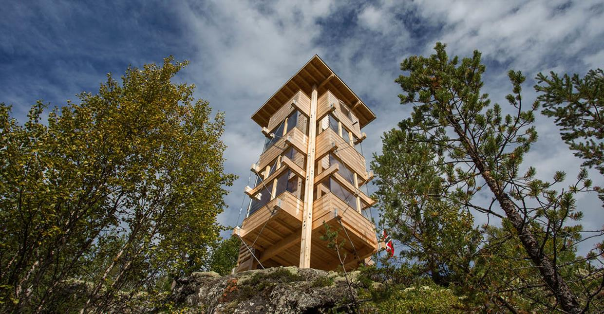 Moose Tower in Espedalen Valley