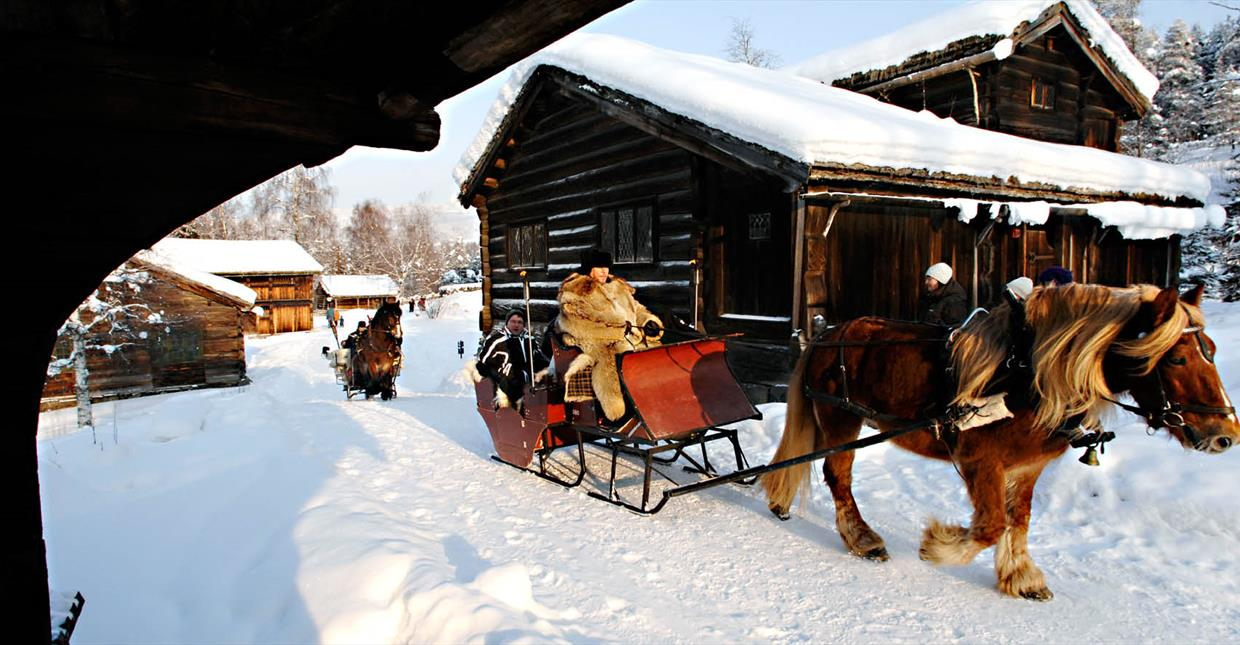Horse Sleigh Riding at Maihaugen