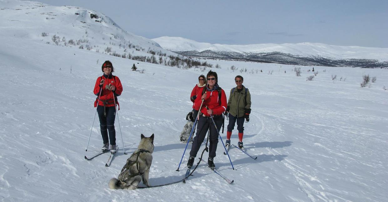 Cross-country skiing at destination Espedalen