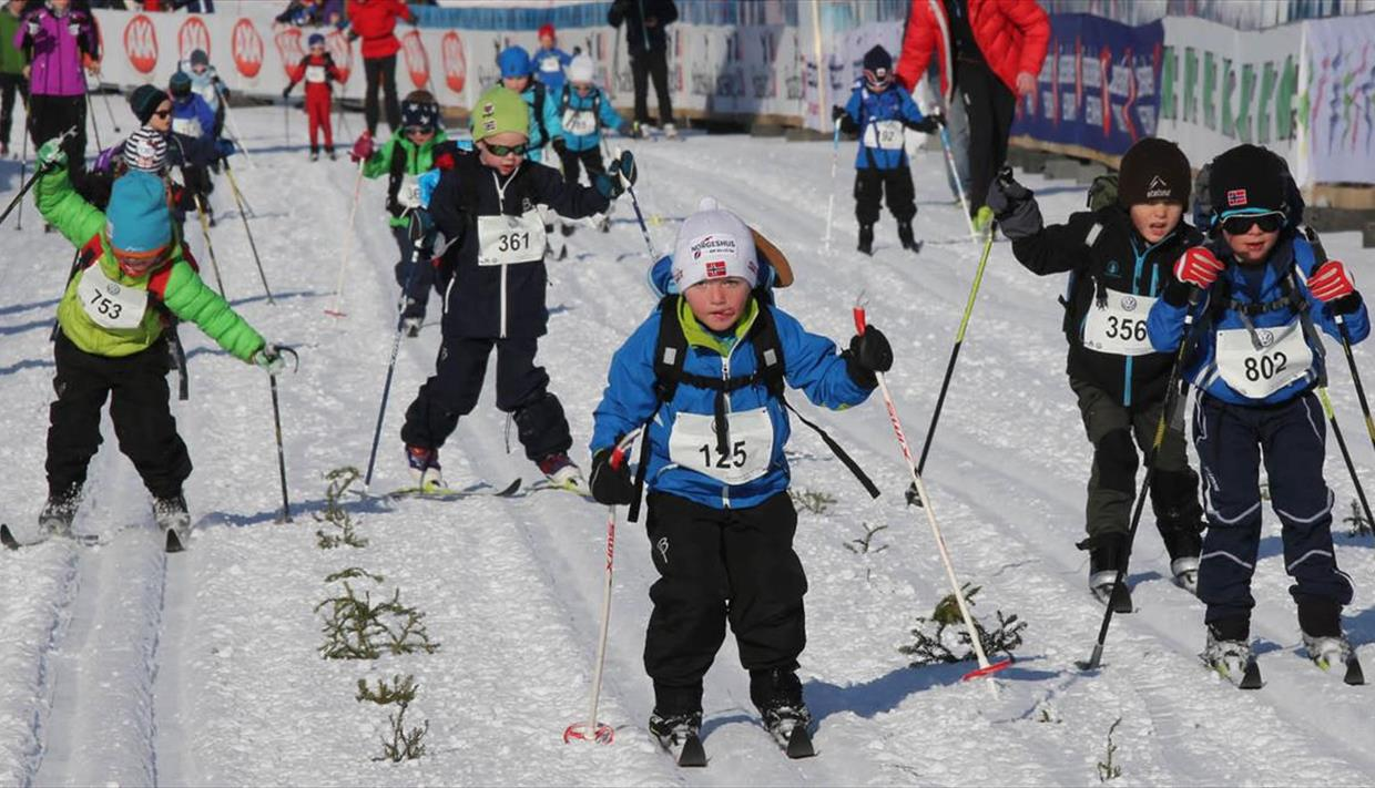 BarneBirken Ski (Children's ski race)