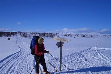 Skitouring with luggage transport, Active-Norway.com