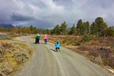 A familiy on tour along a dirt road