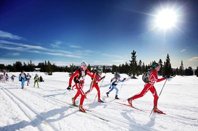 UngdomsBirken Ski (Youth ski race)